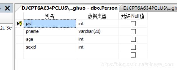 person表